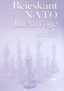 Beieškant NATO: pasiekimai, nesėkmės, perspektyvos