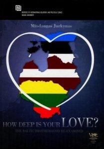How deep is Your LOVE? Politinių regionų konstravimas
